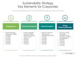 Sustainability Strategy Key Elements For Corporates