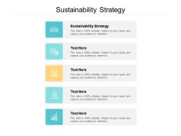 Sustainability Strategy Ppt Powerpoint Presentation Professional Influencers Cpb