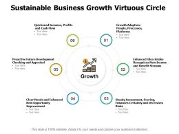 Sustainable Business Growth Virtuous Circle