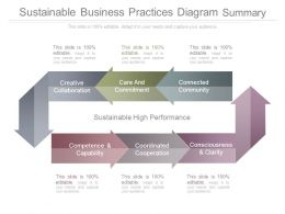 Sustainable Business Practices Diagram Summary