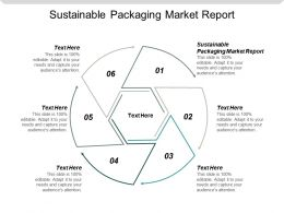Sustainable Packaging Market Report Ppt Powerpoint Presentation Gallery Example Introduction Cpb