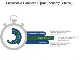 Sustainable Purchase Digital Economy Climate Change Developing Countries