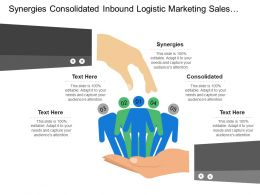 Synergies Consolidated Inbound Logistic Marketing Sales Supplier Power