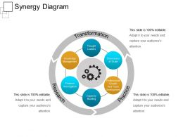 Synergy Diagram Ppt Sample Presentations