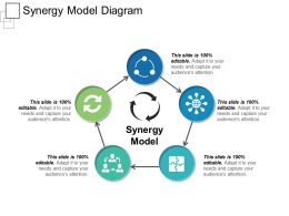 Synergy Model Diagram Ppt Sample Presentations