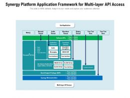 Synergy Platform Application Framework For Multi Layer API Access
