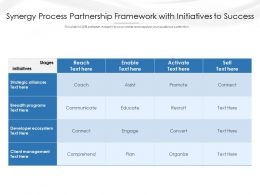 Synergy Process Partnership Framework With Initiatives To Success