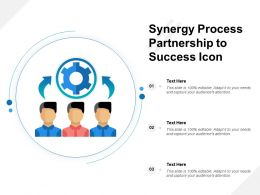 Synergy Process Partnership To Success Icon