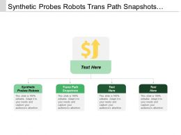 Synthetic Probes Robots Trans Path Snapshots User Defined Transactions