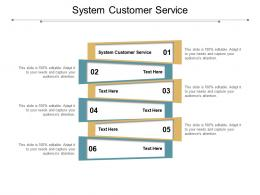 System Customer Service Ppt Powerpoint Presentation File Graphics Cpb