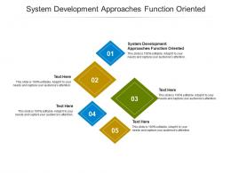 System Development Approaches Function Oriented Ppt Powerpoint Presentation Infographics Template Cpb