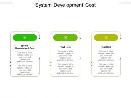 System Development Cost Ppt Powerpoint Presentation Portfolio Grid Cpb