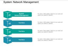 System Network Management Ppt Powerpoint Presentation Ideas Slide Download Cpb