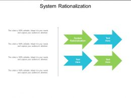 System Rationalization Ppt Powerpoint Presentation Professional Example Cpb