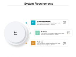 System Requirements Ppt Powerpoint Presentation Professional Ideas Cpb