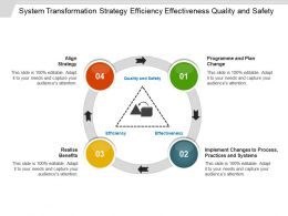System Transformation Strategy Efficiency Effectiveness Quality And Safety