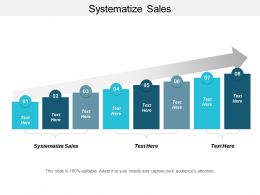 Systematize Sales Ppt Powerpoint Presentation Styles Skills Cpb