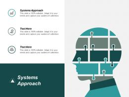 Systems Approach Ppt Powerpoint Presentation Gallery Pictures Cpb