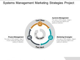 Systems Management Marketing Strategies Project Management Revenue Recognition Standard Cpb