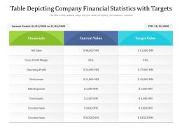 Table Depicting Company Financial Statistics With Targets