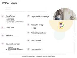 Table Of Content Cross Selling Strategies Ppt Portrait