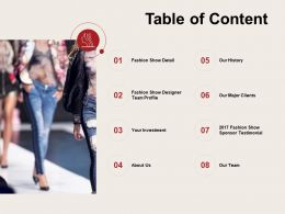 Table Of Content Investment C931 Ppt Powerpoint Presentation Gallery Guide