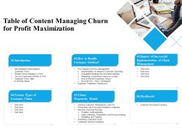 Table Of Content Managing Churn For Profit Maximization Ppt Powerpoint Elements