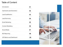 Table Of Content Optimized Lead Generation Ppt Powerpoint Presentation Samples