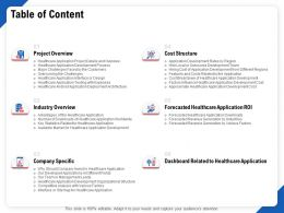 Table Of Content R399 Cost Structure Ppt Powerpoint Presentation File