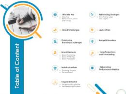 Table Of Content Rebrand Ppt Powerpoint Presentation Show Infographic Template