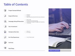 Table Of Contents Campaign Setup And Execution Ppt File Aids