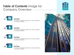 Table Of Contents Image For Company Overview Infographic Template