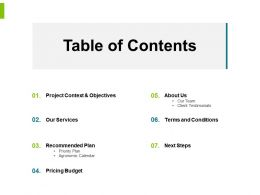 Table Of Contents Our Services Ppt Powerpoint Presentation File Visuals