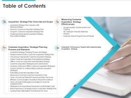 Table Of Contents Scope For Customer Acquisition Strategy Plan Ppt Professional