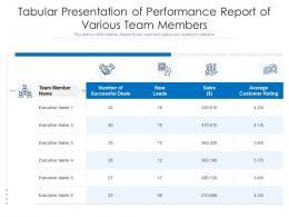 Tabular Presentation Of Performance Report Of Various Team Members