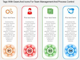Tags With Gears And Icons For Team Management And Process Control Flat Powerpoint Design
