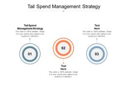 Tail Spend Management Strategy Ppt Powerpoint Presentation Layouts Background Cpb