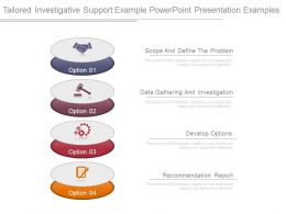 Tailored Investigative Support Example Powerpoint Presentation Examples