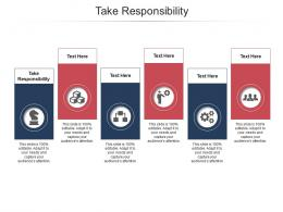 Take Responsibility Ppt Powerpoint Presentation Professional Graphics Cpb