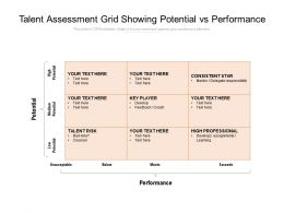 Talent Assessment Grid Showing Potential Vs Performance