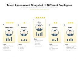 Talent Assessment Snapshot Of Different Employees