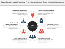 Talent Development Executive Coaching Monitoring Team Planning Leadership