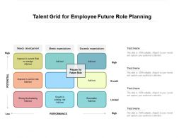 Talent Grid For Employee Future Role Planning