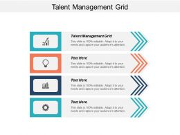 Talent Management Grid Ppt Powerpoint Presentation Infographic Template Brochure Cpb