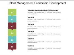 Talent Management Leadership Development Ppt Powerpoint Presentation Infographics Files Cpb