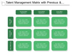 Talent Management Matrix With Previous And Current Work Experience