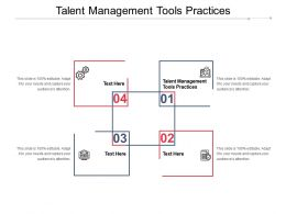 Talent Management Tools Practices Ppt Powerpoint Presentation Gallery Elements Cpb