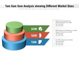 Tam Sam Som Analysis Showing Different Market Sizes