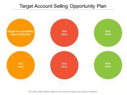 Target Account Selling Opportunity Plan Ppt Powerpoint Presentation Diagrams Cpb