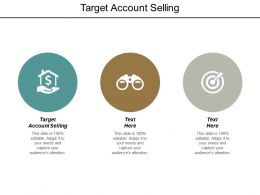Target Account Selling Ppt Powerpoint Presentation Pictures Guide Cpb